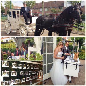 bruiloft in de brasserij met ijscokar en ijsjes